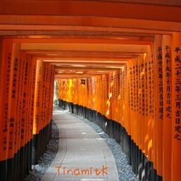 Torii-Tunnel