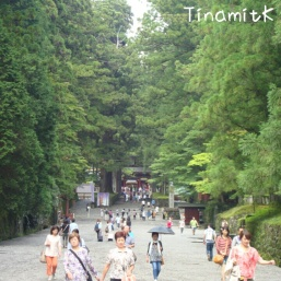 der Weg zum Toshogu Schrein