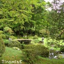 idyllischer kleiner Garten